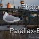parallax-effect